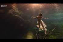 Under the Surface | Underwater Photography with Lexi Laine