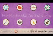 How Psychedelics Are Saving Lives
