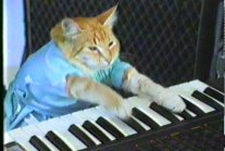 Play Him Off Keyboard Cat