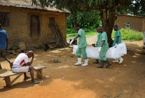 Promising Ebola Drugs Stuck in Lab Limbo as Outbreak Rages in Africa