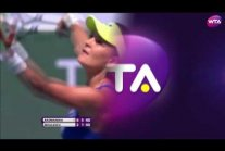 2013-2016 WTA Shot of the Year