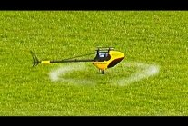 RC HELICOPTER CUTTING GRASS! ROTOR LIVE 2017!