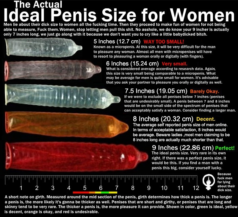 Average penis size with photos