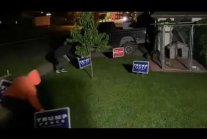 He had fun firing paintballs at trespassing Trump/Pence lawn sign thieves.