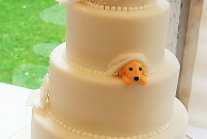 Couples Found A Way To Include Their Dogs Into Their Wedding And It's...
