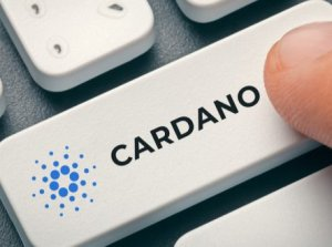 Cardano (ADA) Price Prediction of Year 2019/2020 - Wykop pl