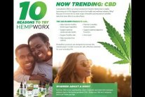 How Much Money Can You Make Growing Weed Uk 2019 - Closet Grow From Seed...