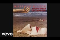 Matthew Wilder - Break My Stride (Official...