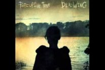 Porcupine Tree - Glass Arm Shattering